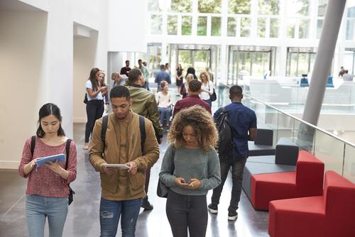Advantages of Attending a Large University