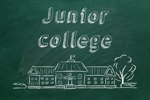 What is Junior College